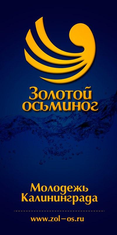 Офис МАУ КМКДЦ «Золотой осьминог»