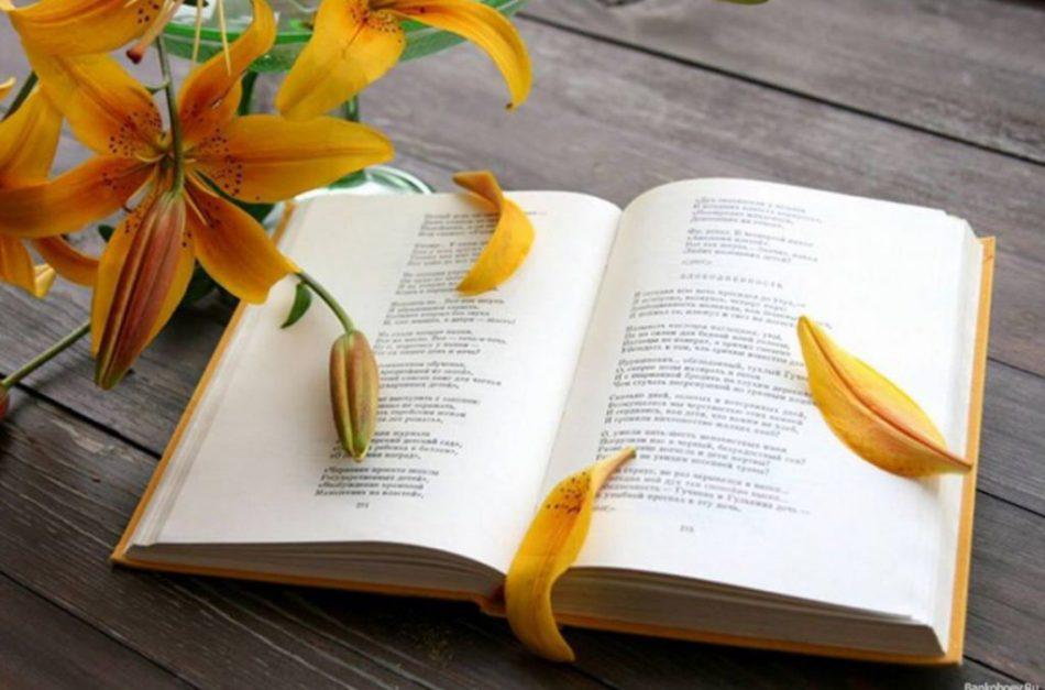 Всемирный День Поэзии в Калининграде