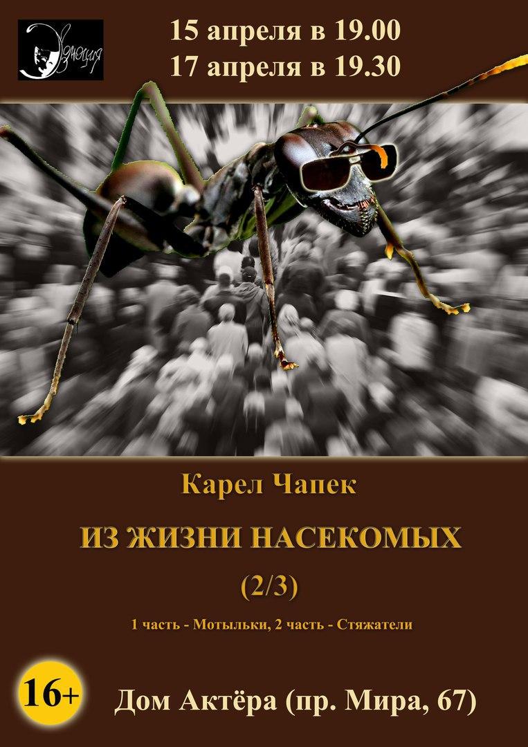 Спектакль «Из жизни насекомых»