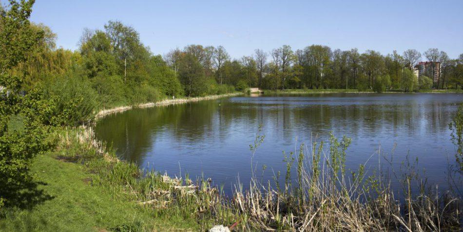 Озеро Летнее