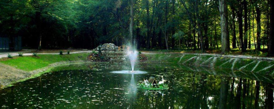 Парк культуры и отдыха г. Гурьевска