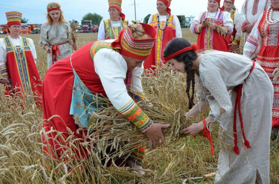 День балтийского поля
