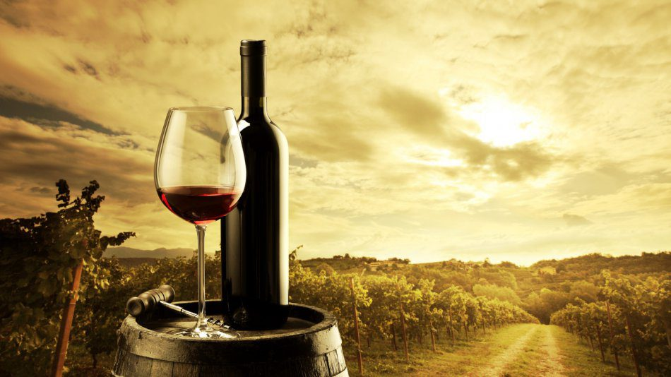 Посещение винного завода «Altos de Trevejos»