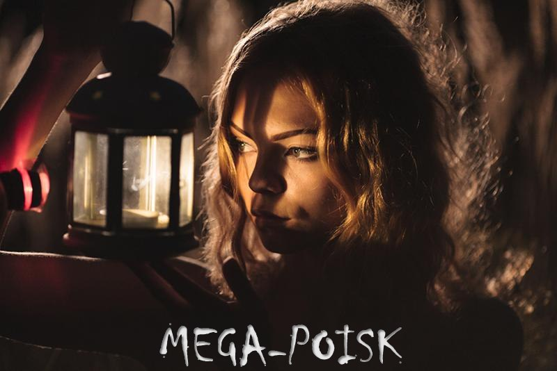 MEGA-POISK от проекта DozoR