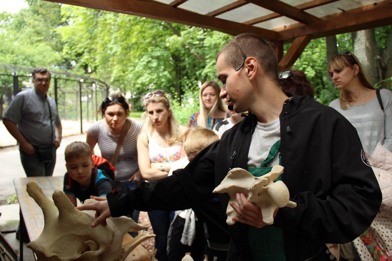 Экскурсия «Зоопарк в чемодане»