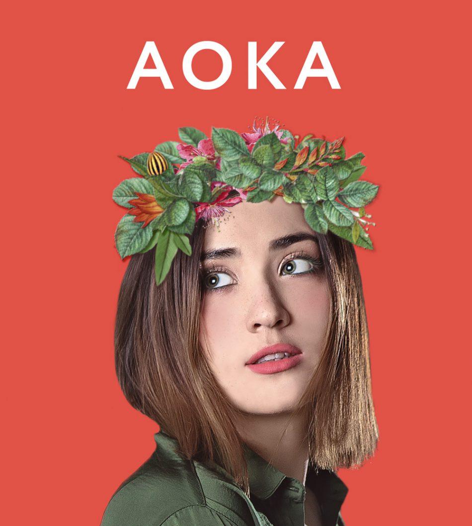 Cольный концерт группы AOKA