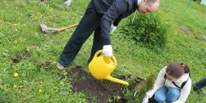 """Ежегодная акция """"Посади дерево"""""""