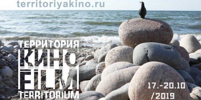 Фестиваль «Территория кино»
