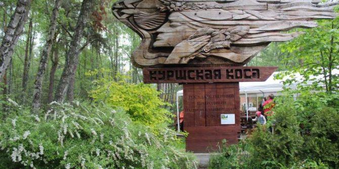 День рождения национального парка «Куршская коса»